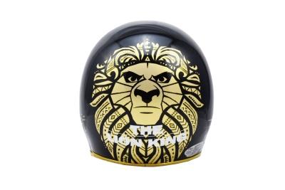CA310 【精裝】獅子王